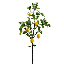 Add hot citrus to your decor with this new lemon tree branch that rises 4 feet. Item #VSL045