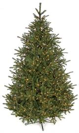 "Plastic/PVC Tips, 1,100 Warm White LED Lights, 70"" Width - Full Size Christmas Tree"