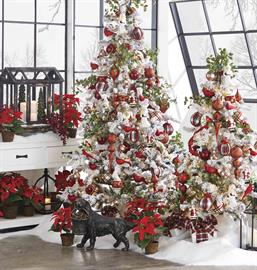Vibrant winter botanicals, poinsettias, cardinals and crisp traditional plaid are the highlights found in our winter greenhouse.