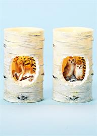 New LED Candles with a unique design featuring beautiful wilderness scenes.