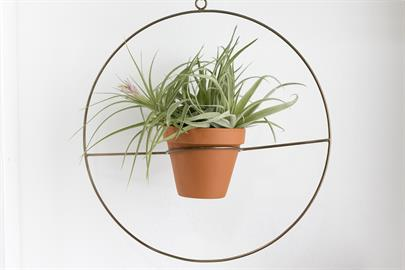 "These airy, gold metal framed plant hangers have space to hold a small pot. 2 sizes available as hangers (openings 3.75"" and 4.5""), 2 sizes available as stands (4"" and 5"" openings)"