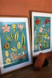 Set of two framed flower prints with blue background under glass