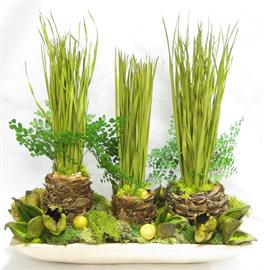 Rect. Natural Wooden Container - Pods, Coco Leaf, Fern & Aloe Vases